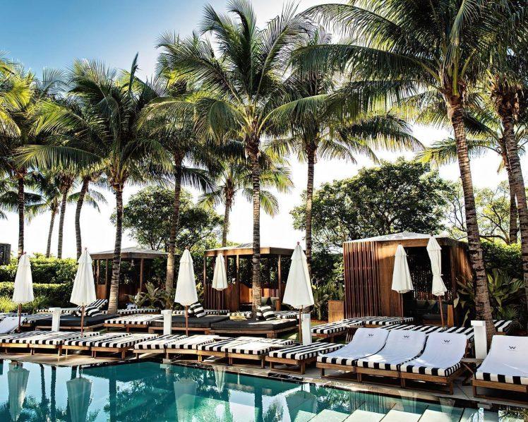 W South Beach Luxury Hotel - Miami Beach, FL, USA - Pool and Palm Trees