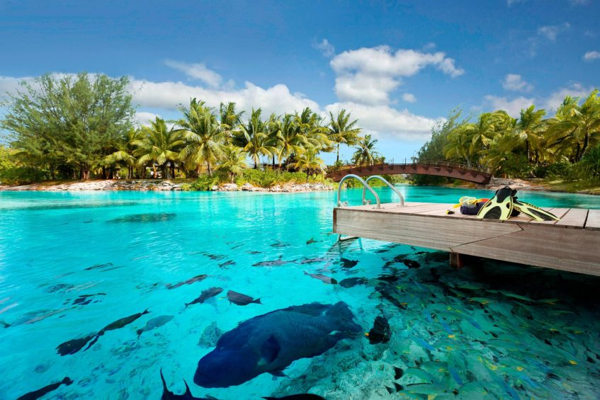 The St. Regis Bora Bora Resort - Bora Bora, French Polynesia - Lagoonarium Dock